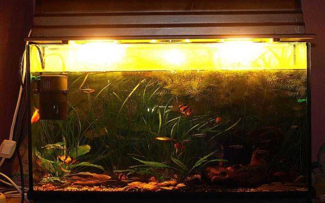 Спектр лампы накаливания похож на солнечный свет в полдень