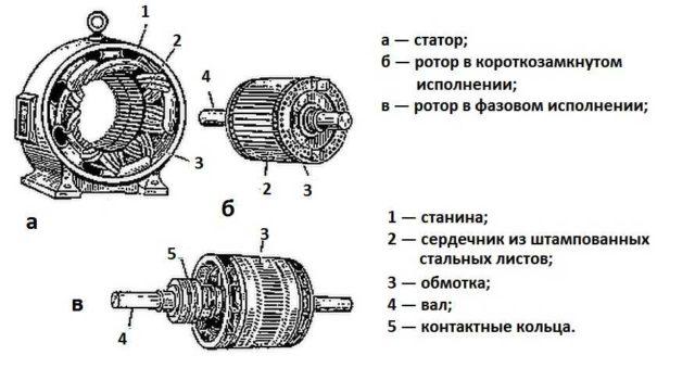Асинхронный двигатель в разобранном виде: основные узлы и части