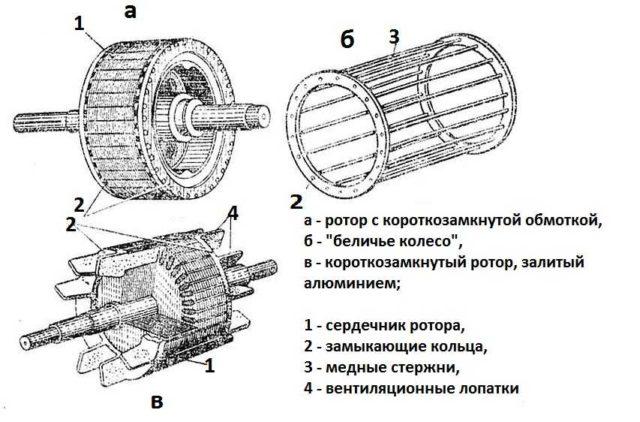 Устройство короткозамкнутого ротора